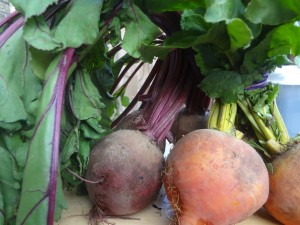 beets_2