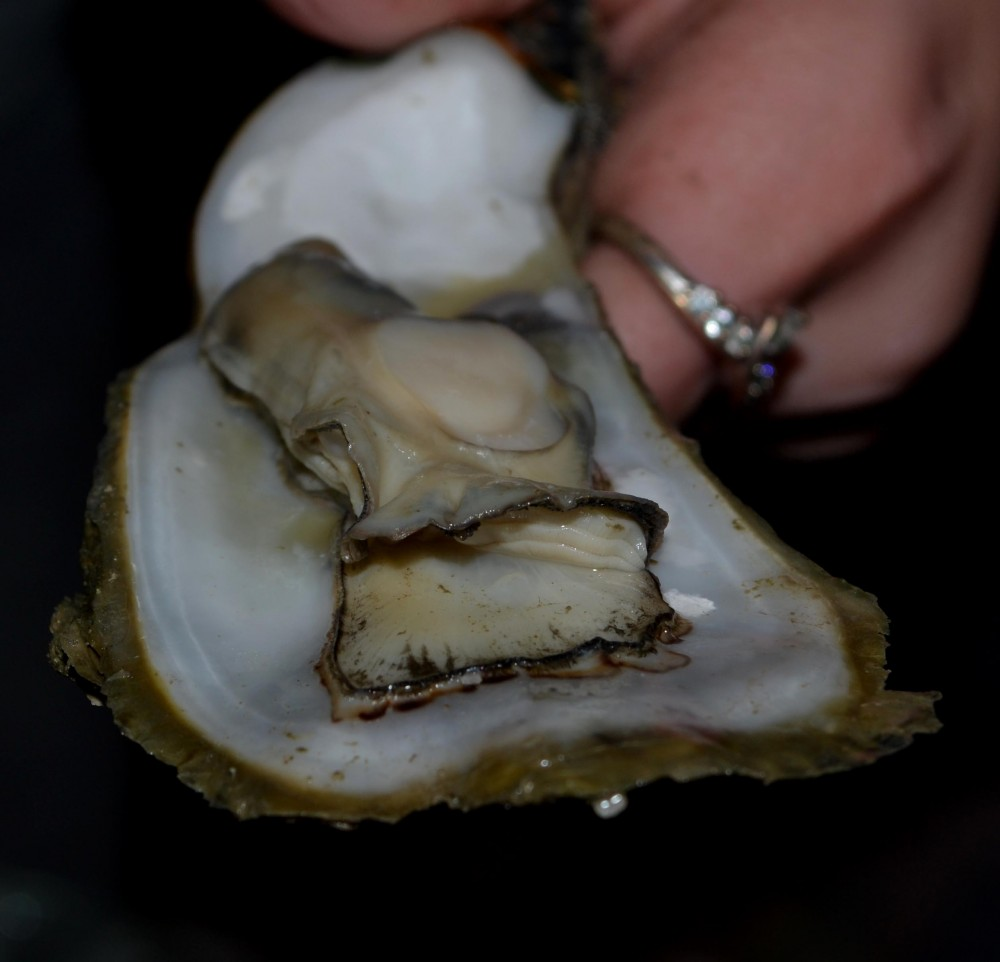 oyster_steamed1