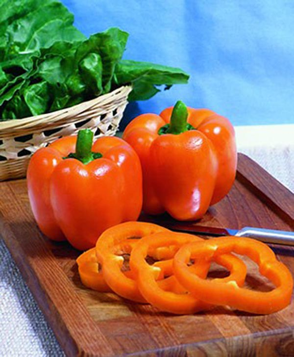 Orange Bell Pepper from Bonnie Farm
