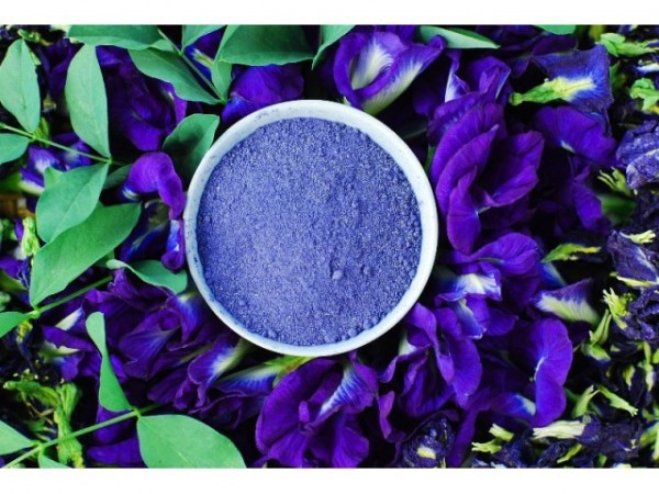 bluebutterflypeapowder1